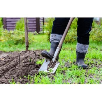 Общий план работ в саду в мае