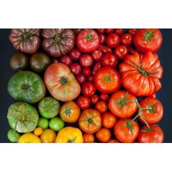 4 сорта помидоров, которые идеально подойдут для вас